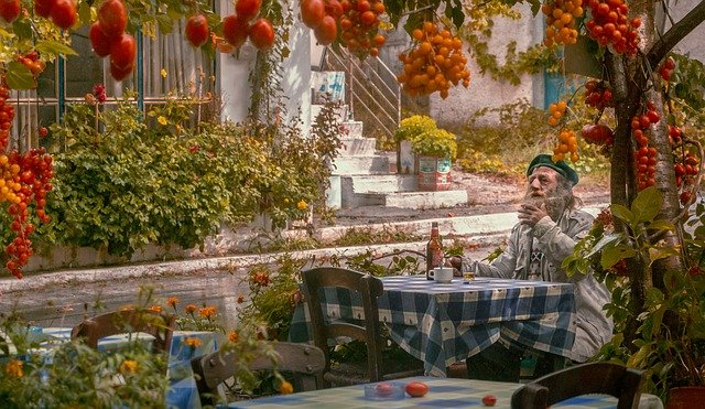 A person sitting at a table with a flower garden